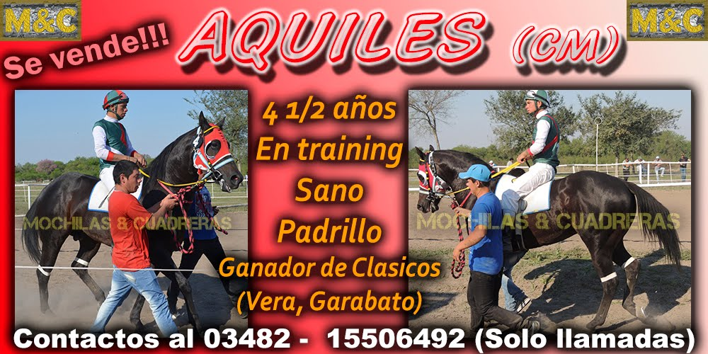 AQUILES - 15-01