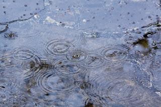 Rain 65484 640
