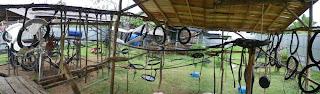 The new orangutan playground