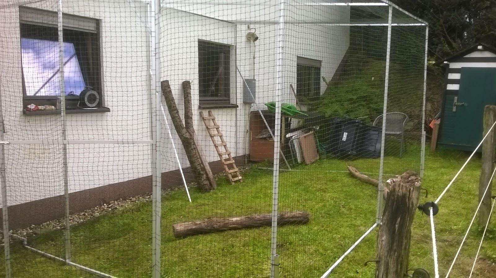 katzennetz nrw die adresse f r ein katzennetz freistehendes katzengehege mit katzennetz ohne bohren. Black Bedroom Furniture Sets. Home Design Ideas