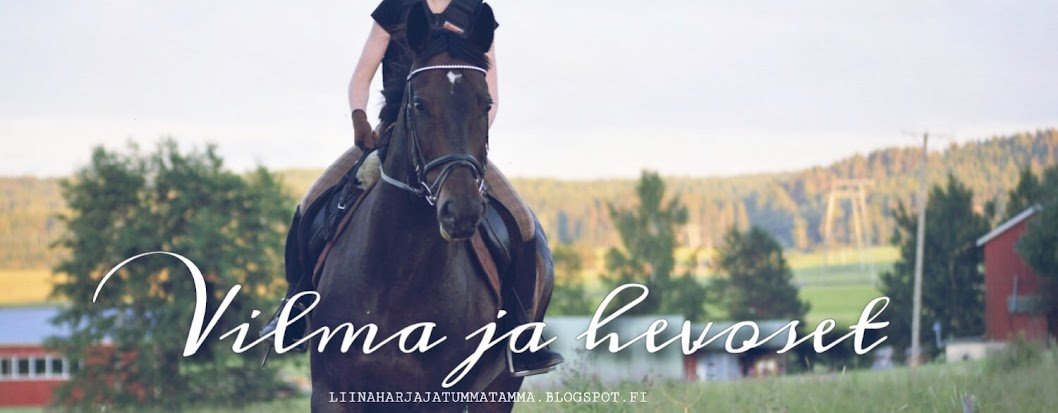 Vilma ja hevoset