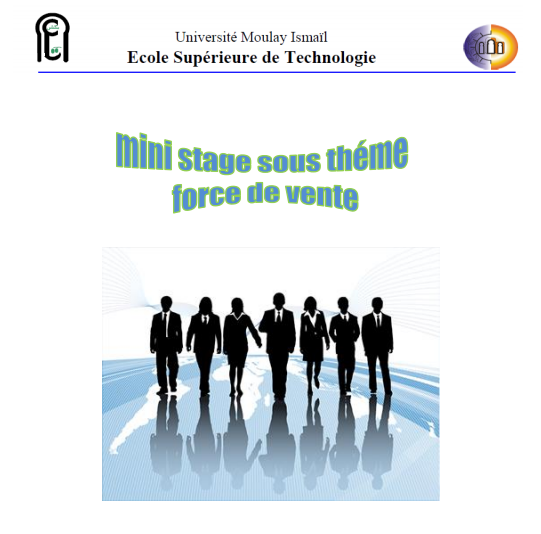 rapport de stage sous theme force de vente