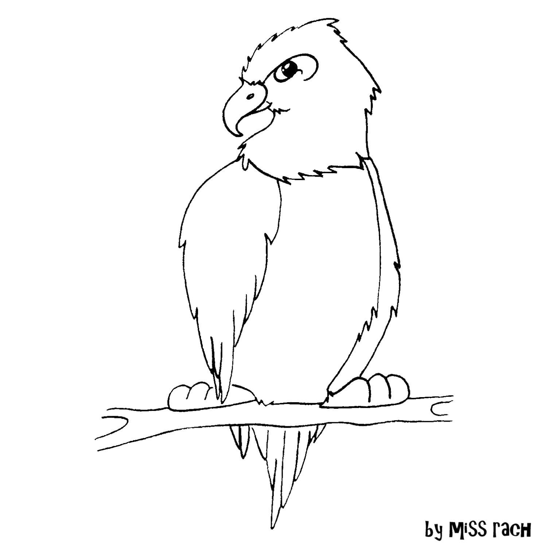 http://3.bp.blogspot.com/-NWnqfiPJF1k/U7ayiZUh-eI/AAAAAAAAFFI/NgqJhvZmjVA/s1600/eagle+2.jpg