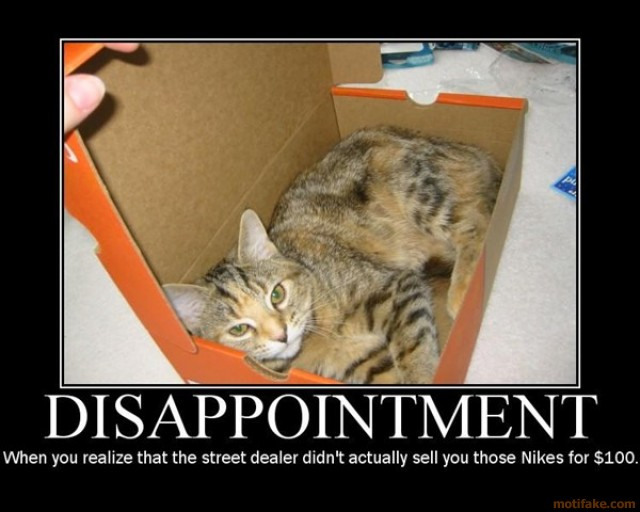 disappointment-demotivational-poster-1204755189.jpg
