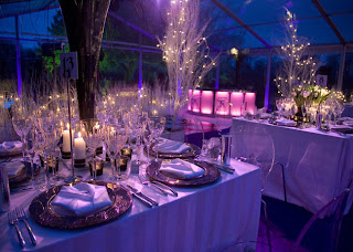 Beautiful Winter Wonderland Wedding Decorations