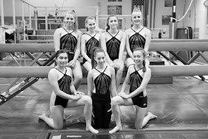2016 Xcel Gold Team