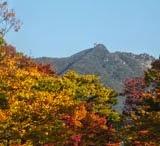 ฤดูกาลของเกาหลีและการแต่งตัว