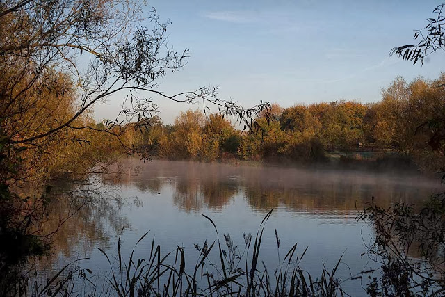 Lodge Lake, with mist, early morning