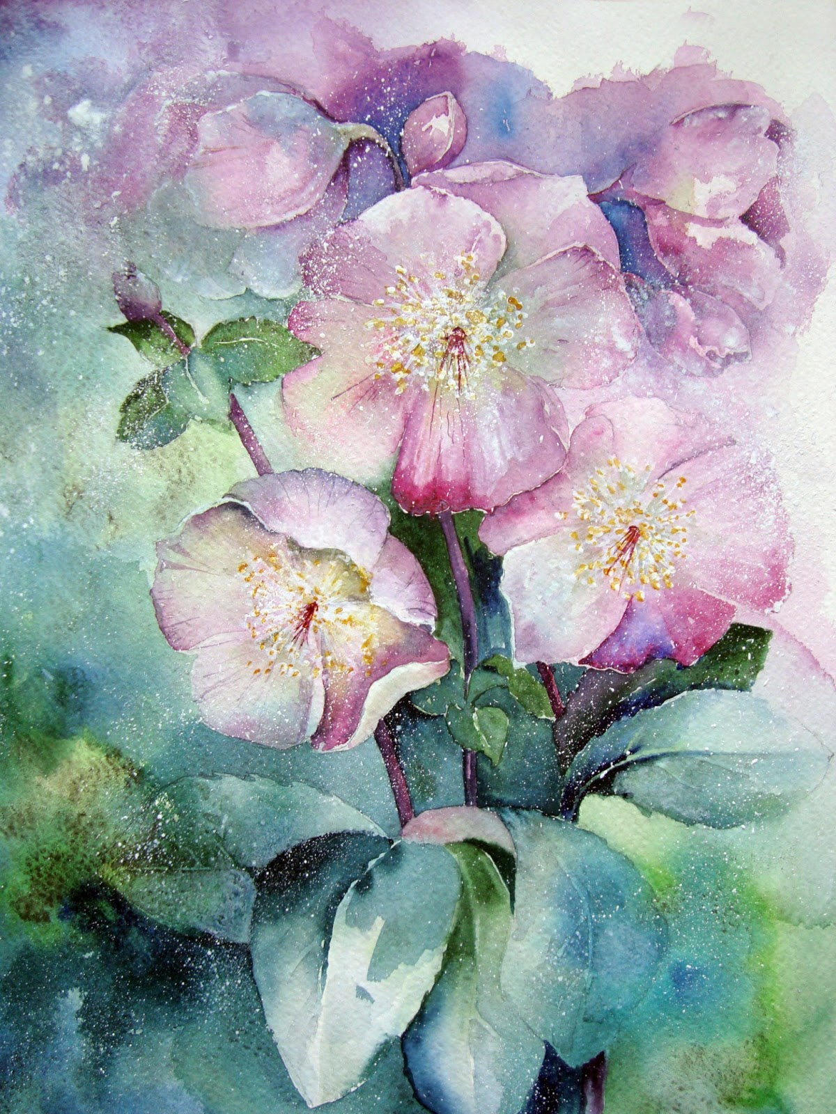 Watercolour Florals Winter Flowers Hellebores