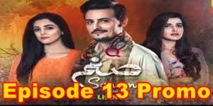 Sanam Episode 13 Promo Full by Hum Tv