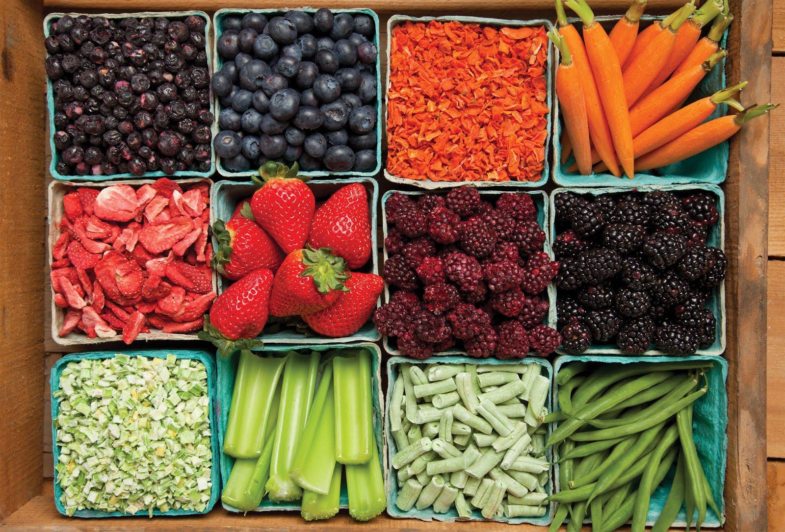 Thrive Life Freeze Dried Food