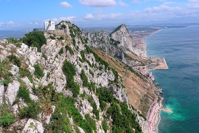 Step into Gibraltar's Upper Rock Nature Reserve