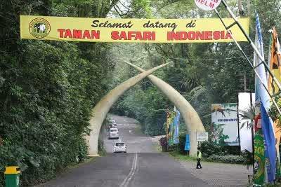 pintu masuk taman safari