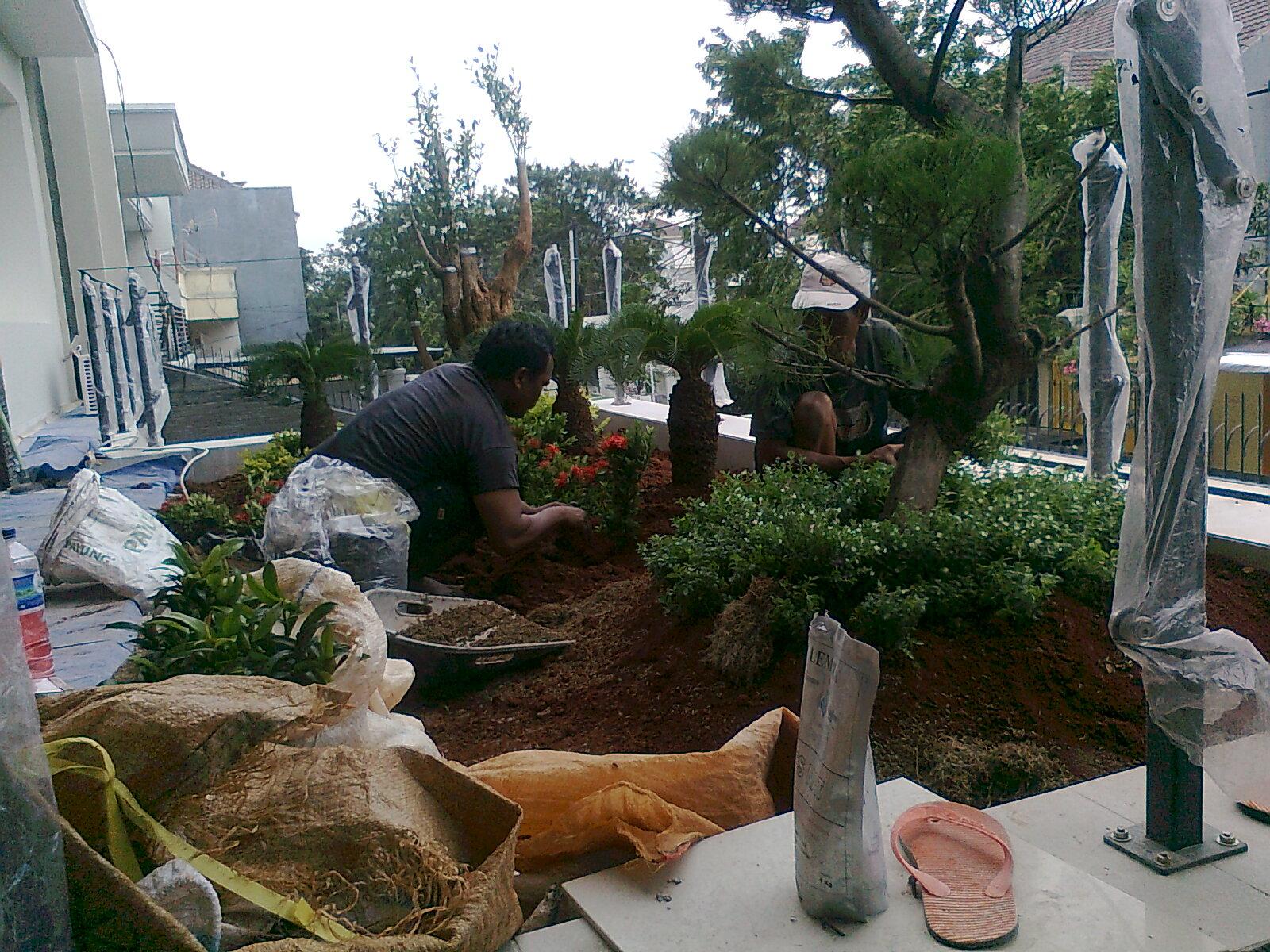 stonesartnet batu alam pembuatan taman