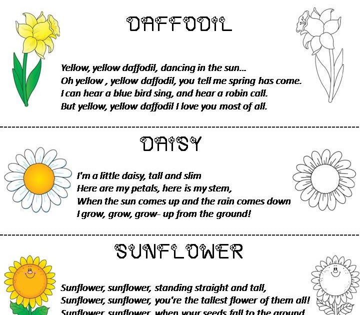 Flower Poems on Spring Poems About Love For Kids