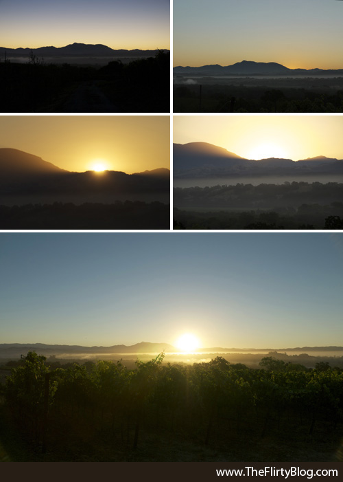 Sunrise, Baker Ridge, Thomas George Winery