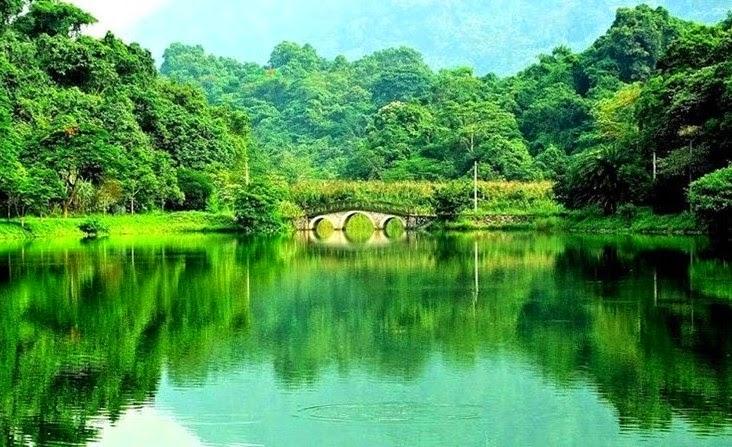 Thưởng ngoạn những khu rừng đẹp nhất Việt Nam