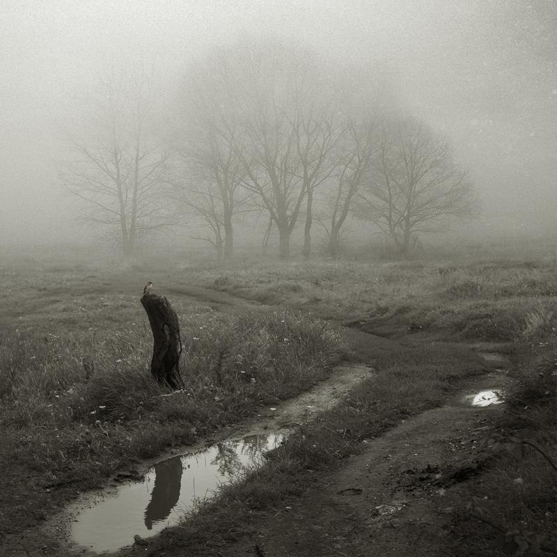 Igor Lihovidov. Fotografía   Photography