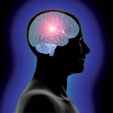 Tips Meningkatkan Kecerdasan Intelektual (IQ), Spiritual (SQ), dan Emosional (EQ)