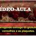 ENTENDENDO A CASCATA DA COAGULAÇÃO (vídeo-aula).