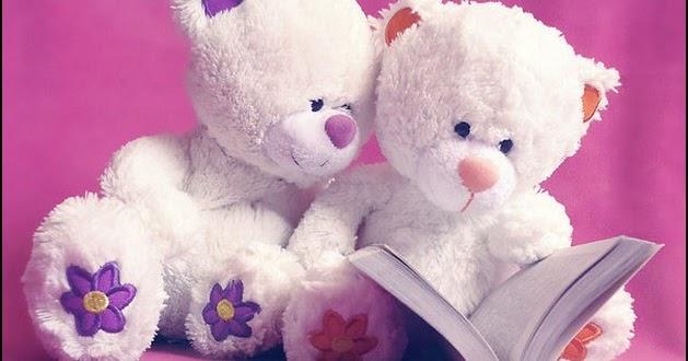 teddy  bear  couple  cute  book  reading