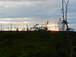 Pacto Sumaco Sunrise