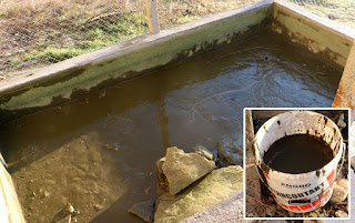 Pond to be cleaned, and the gunk I removed