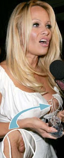funny picture:  pamela anderson with naked nippel