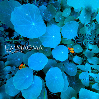 "UMMAGMA ""Frequency"""