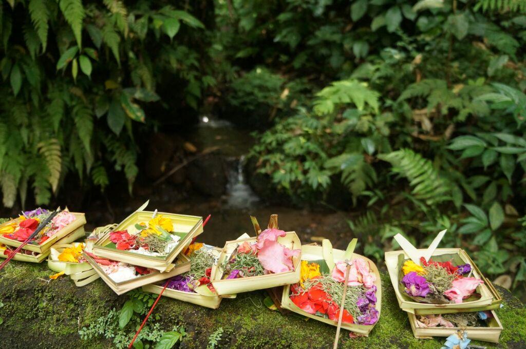 Offrandes à Gunung Kawi