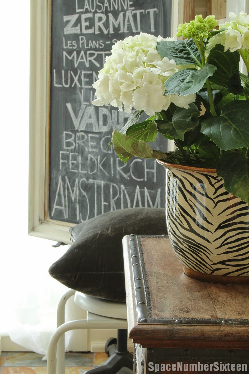 zebra print planter