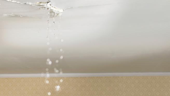 Novak manitas c mo tapar goteras - Reparar filtraciones de agua ...