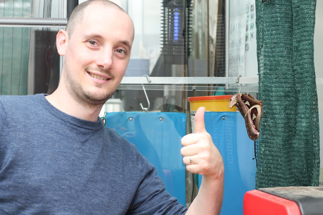 comparison of hand to huge butterfly at Wye Valley Butterfly Zoo