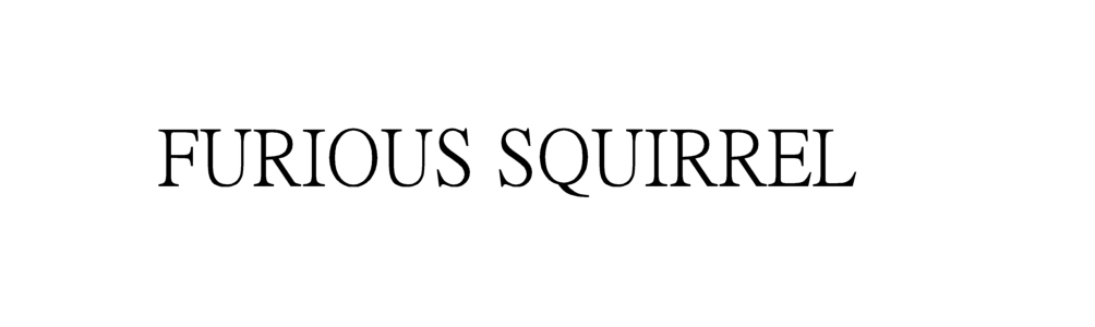 Furious Squirrel
