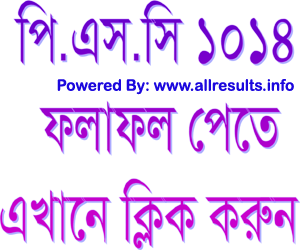 psc exam 2014 result download, psc result 2014 online, school wise psc result 2014 download, www.dpe.gov.bd