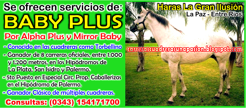 BABY PLUS - 13.05.2015