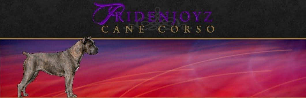 PrideNJoyz Cane Corso