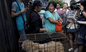 20.jun.2015 - Yang Xiaoyun, 63, negocia com vendedora para comprar cães durante o Festival de Carne de Cachorro de Yulin, no sul da China. A idosa já gastou mais de US$ 70 mil para salvar centenas de animais que virariam comida no evento
