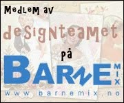 Barnemix Design Team
