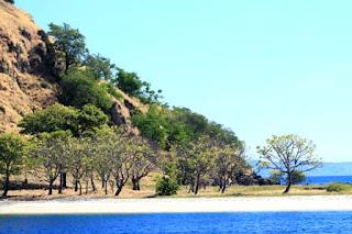 |keajaiban-kejaiban,Pulau komodo