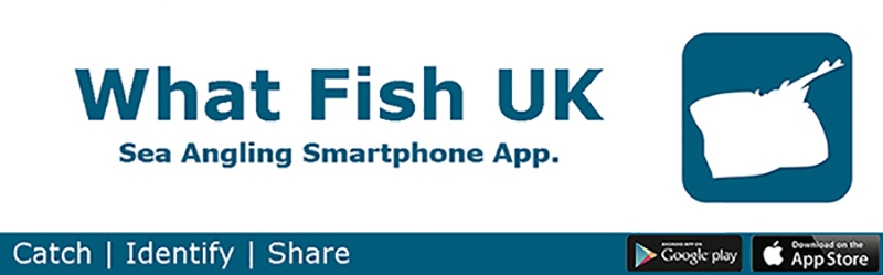 What Fish UK Smartphone App