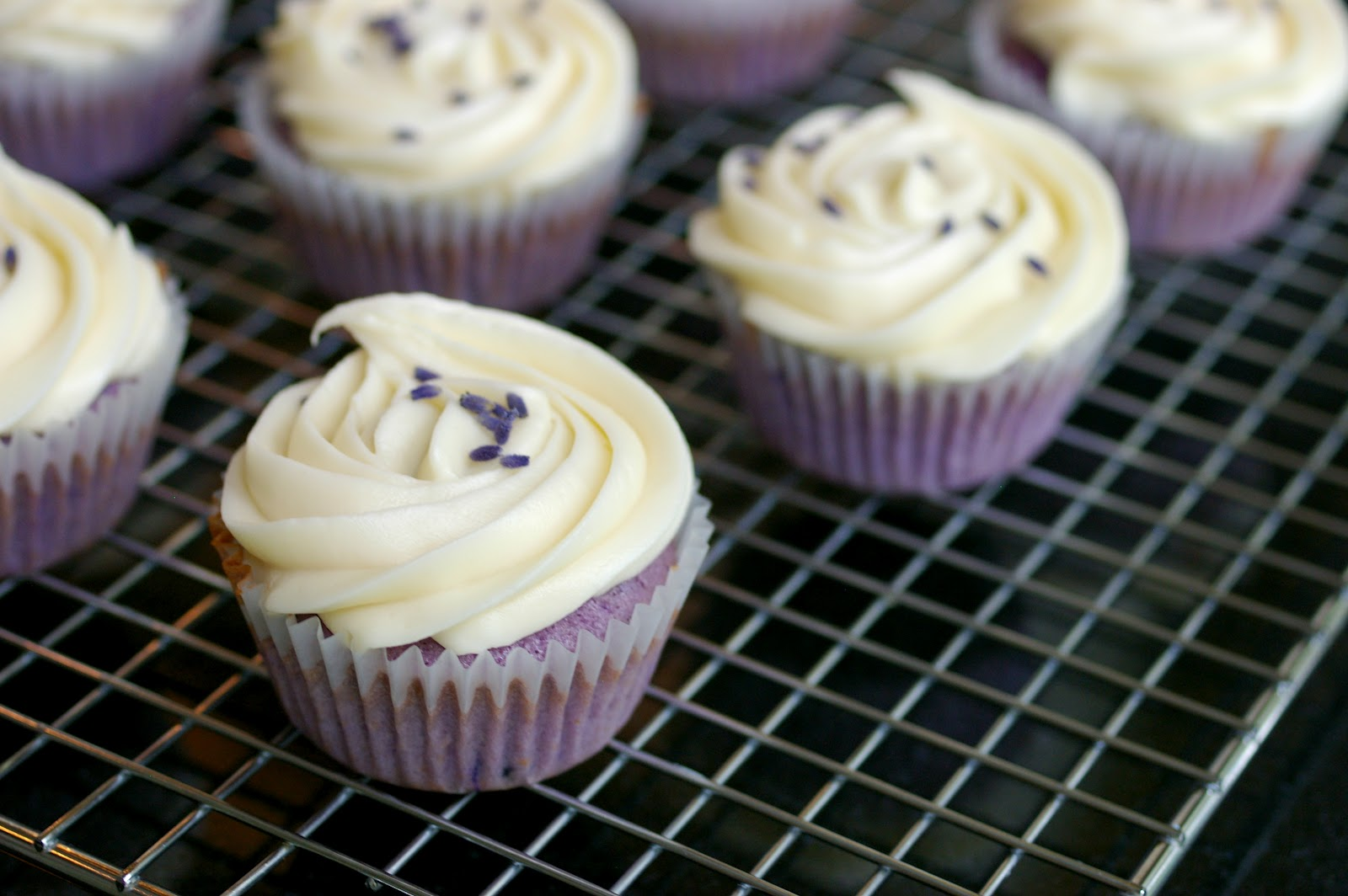 The Cupcake Suite: Lavender Honey Cupcakes