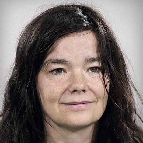 Björk - The Homogenic Singles Box