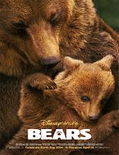 Bears (Osos) (2014)