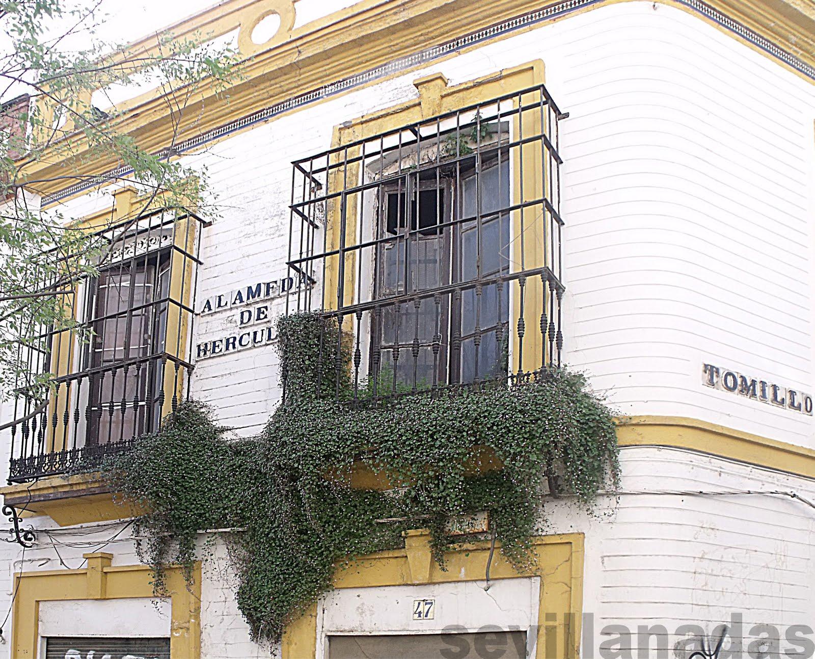 Sevilla en estampas jardines colgantes - Jardines de hercules sevilla ...