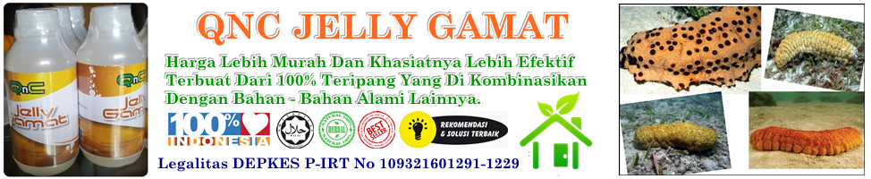 Grosir Jelly Gamat Gold G