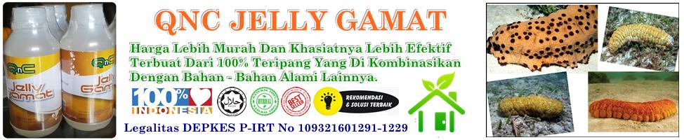 Grosir Jelly Gamat Gold G