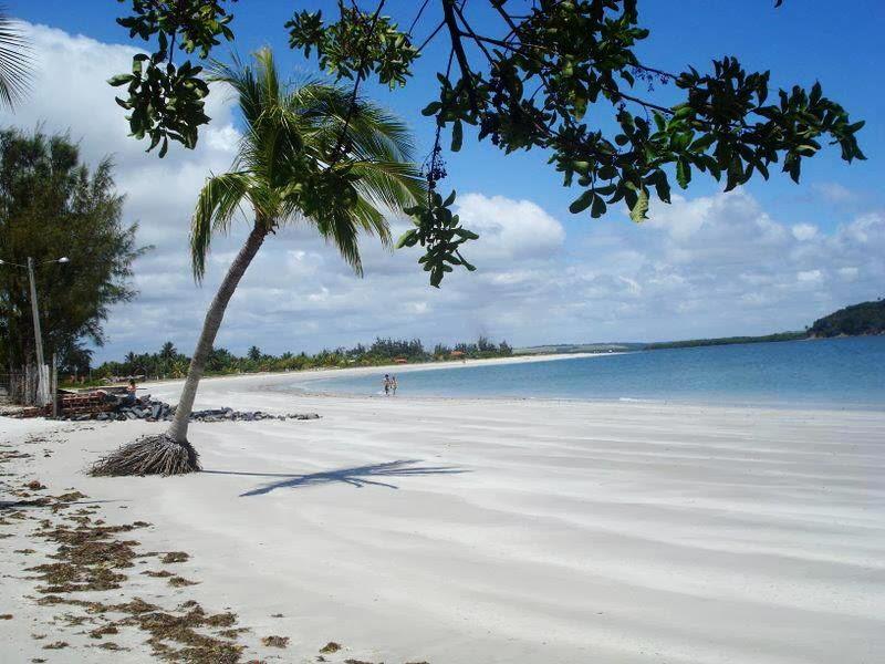 Resultado de imagem para Praia do Fortinho ou Enseada dos Golfinhos