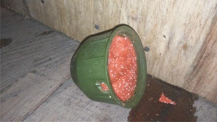 Para nuestra familia explosivo plastico casero - Plastico inyectado casero ...
