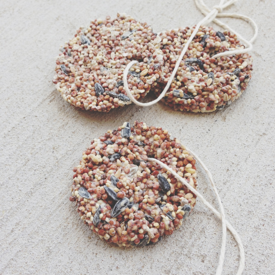 http://hello-homebody.com/2013/07/15/birdseed-ornaments/